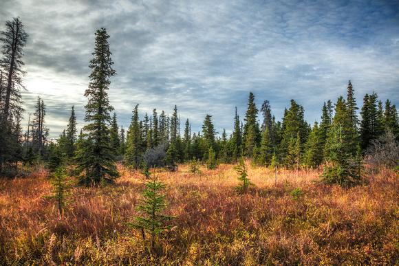 Williwaw Lakes Trail - Alaska by Julien Schroder